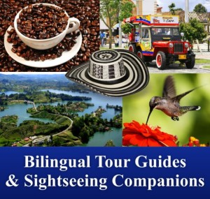 Bilingual tour guides sightseeing companions