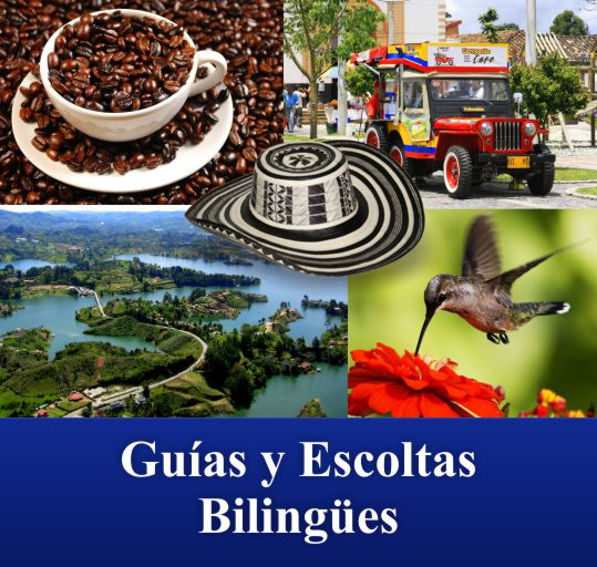 Guias escoltas bilingues Traductor Turistico