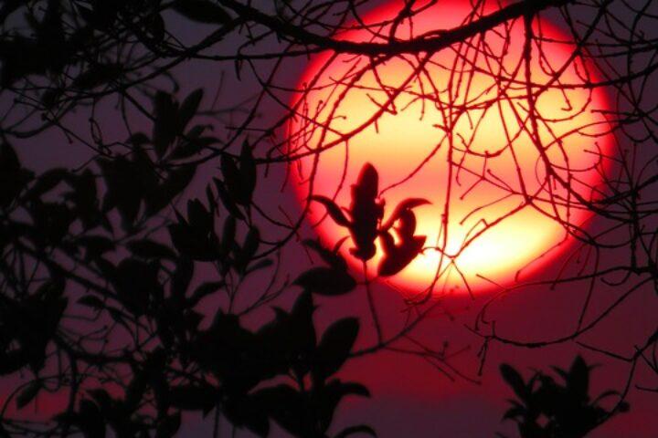 m11-sunset_zomogy-pixabay